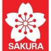 Koi (Sakura)